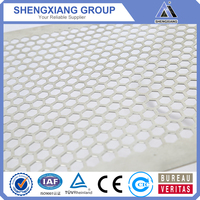China Supplier High quality Perforated Metal Sheet passed ISO9001 protection