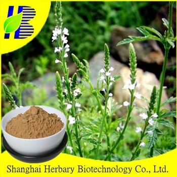 HOT Sale European Verbena P.E/verbena extract /Herba Verbenae
