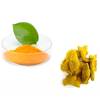 100% Pure Wholesale Water Soluble Turmeric Powder Buyers - Buy Water  Soluble Turmeric Powder,Turmeric Powder Buyers,Wholesale Turmeric Powder  Product