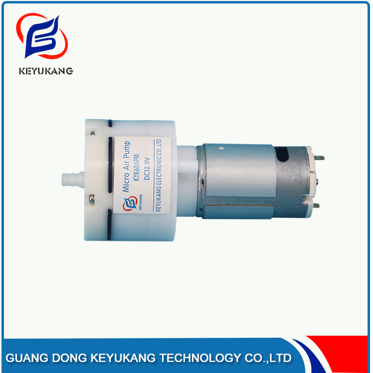Wholesale Price Corrosion Resistance 12V Small Silent Vacuum Pump