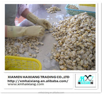 Wholesale frozen yellow baby clam meat