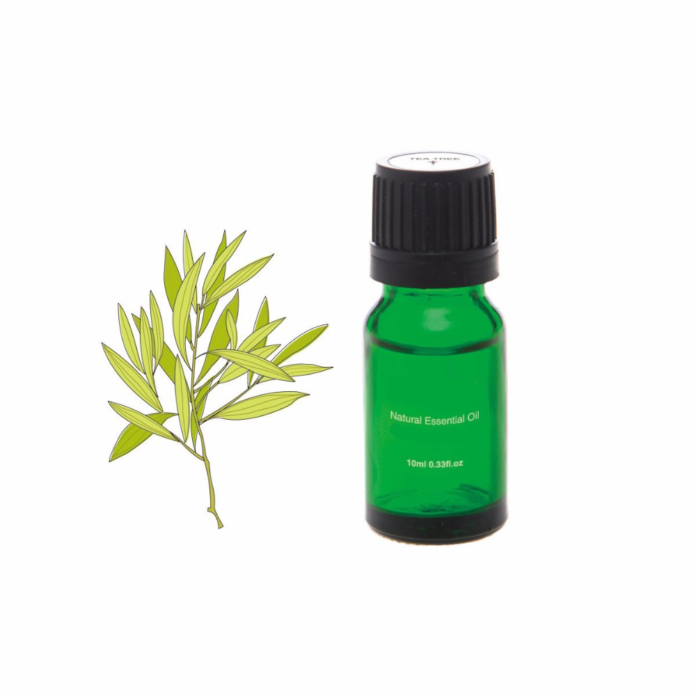High quality Wholesale Natural Essential Oil Perfume Oil