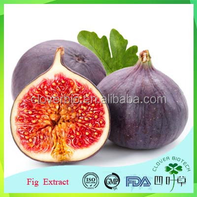 natural fig leaf extract powder with health care effects