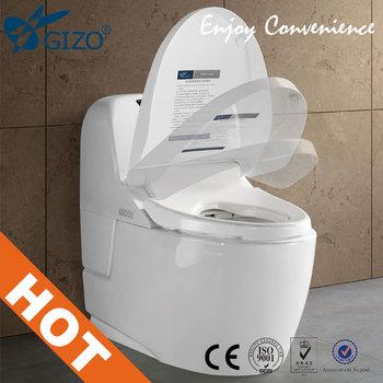 Electronic Bidet Toilet Built In Abs Spray Nozzels Enema