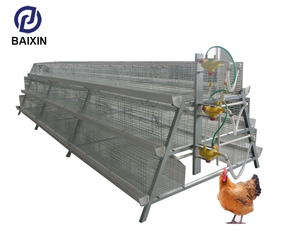 Series Chicken Battery cage for Broiler H-type