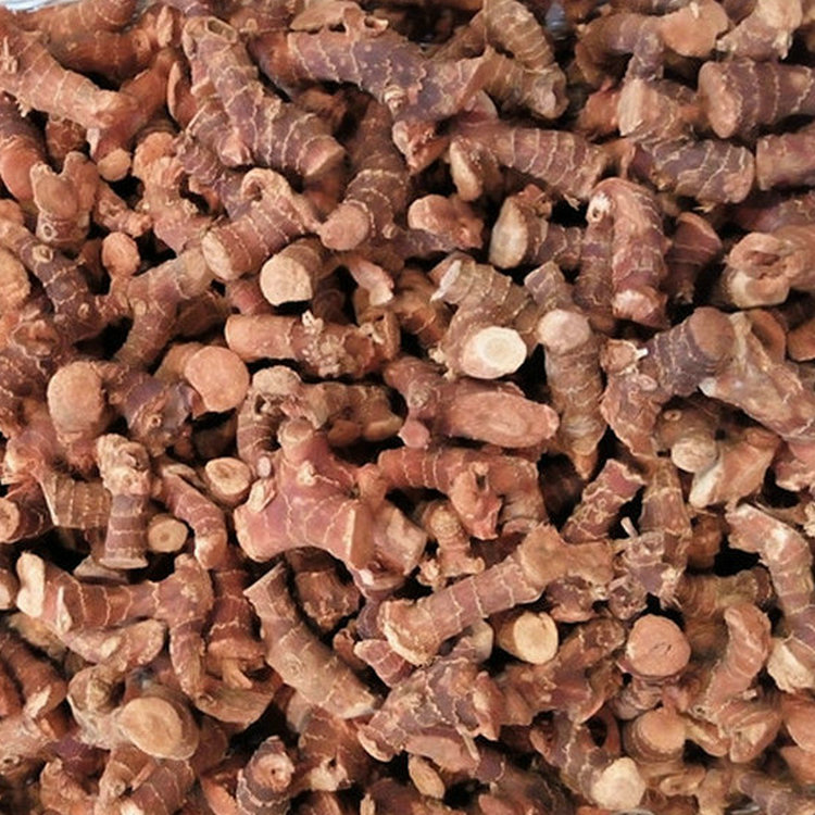 Professional supplier of agricultural product vietnam galangal