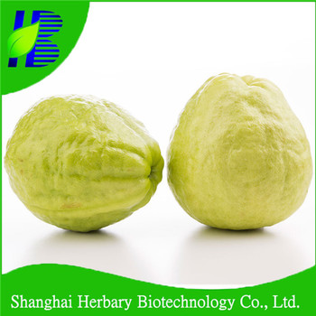 High Germination Fruit Seeds For Planting,Guava Seeds - Buy Hybrid  Seeds,One Seeded Fruits Name,Different Types Of Seeds Product on Alibaba com