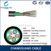 GYTS PSP Armored cable 24 core fiber optic cable online shopping