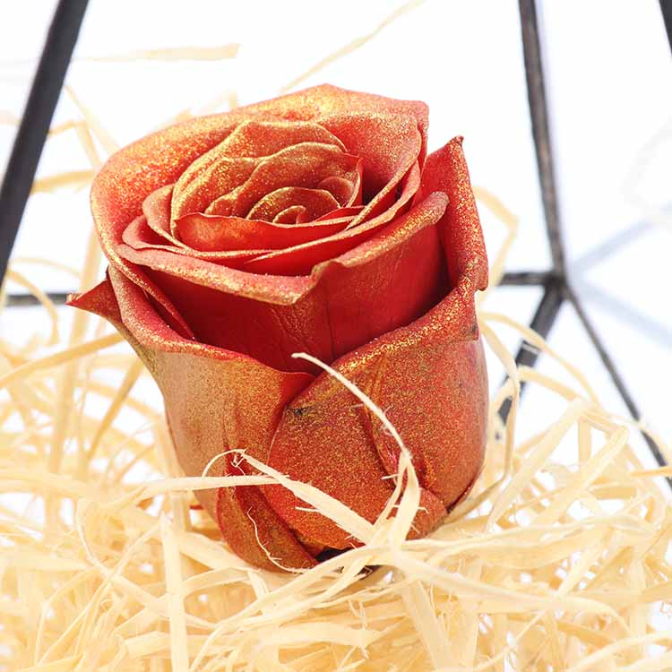 Factory Supply Wholesale  Soft Touch Natural Eternal Forever Immortal preserved roses ecuador
