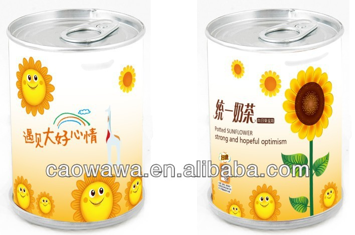 2014 , dancing sunflower can with perennial flower seeds