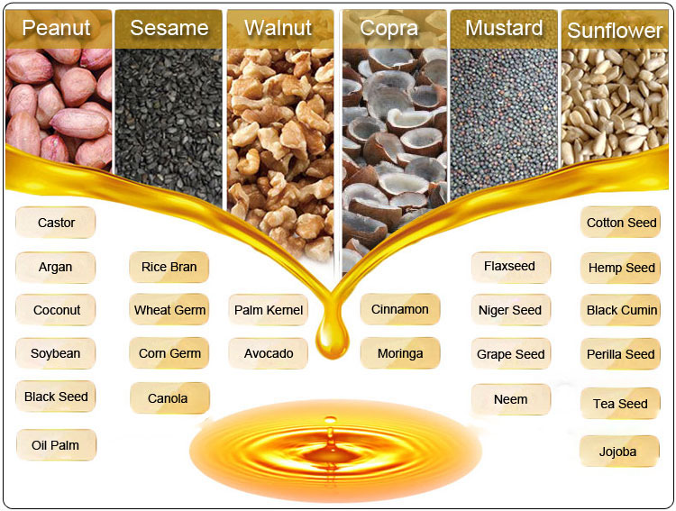 Hot small plant seed oil press sesame hemp castor prickly pear seed eucalyptus oil extraction machine