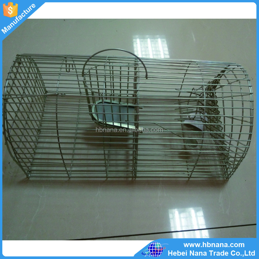 Portable Folding Steel Wire Rat / Coyote Cage Trap