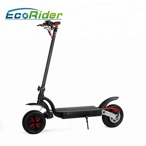 OEM brand adults electric scooter kick scooter fold scooter