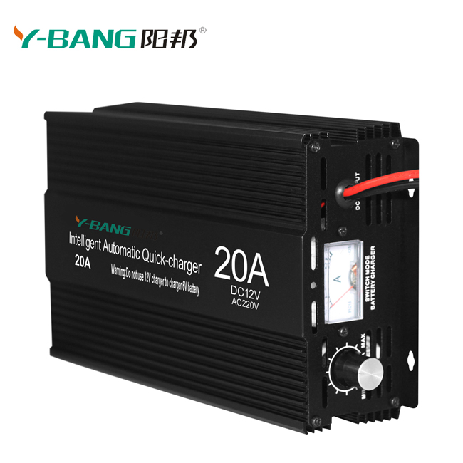Professional Power Supply AC/DC 24V 12V 20A Car Battery Charger