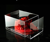High Quality Clear Acrylic Shoe Display Box