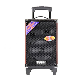 Temeisheng Q8S Hot Selling portable Outdoor Wireless Trolley dj speaker with bluetooth speaker