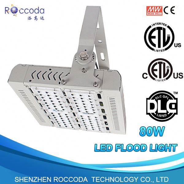 With 5 Years Warranty Factory SMD Chips LED Spot Light 100W with UL Listed