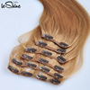 /product-detail/triple-quad-weft-double-drawn-grade-8a-brazilian-virgin-remy-hair-clip-in-human-hair-extension-60581819157.html