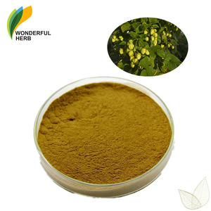Organic humulus lupulus extract pure flower powder for beer hops