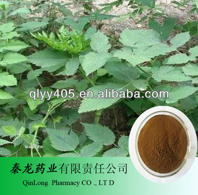 Anti- câncer cohosh preto extrato