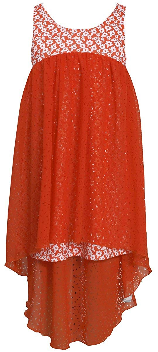 c69bf9eea0b29 Get Quotations · Bonnie Jean Girls Floral Chiffon Summer Sun Dress