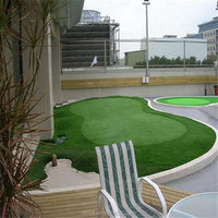 Contemporary promotional artificial grass landscaping