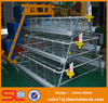 Chicken Wire Cage Mesh Layer Egg Chicken Cage/Poultry Farm House Design
