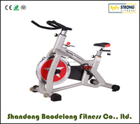 HOT SALE Exercise Spining Bike FB-5806 With CE and ROHS