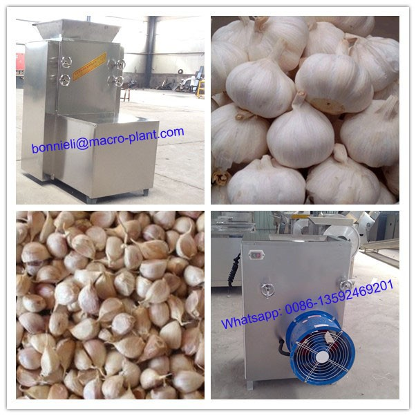 garlic onion peeling machine separating machine