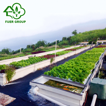 Agriculture Aquaponics Greenhouse vegetable with fish ecological hydroponic  system, View Agriculture Aquaponics Greenhouse , Fuer Product Details from