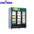 Vertical Single Temperature Display refrigerated Chiller