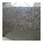 g623 granite Bianco sado grey stone tiles for stairs