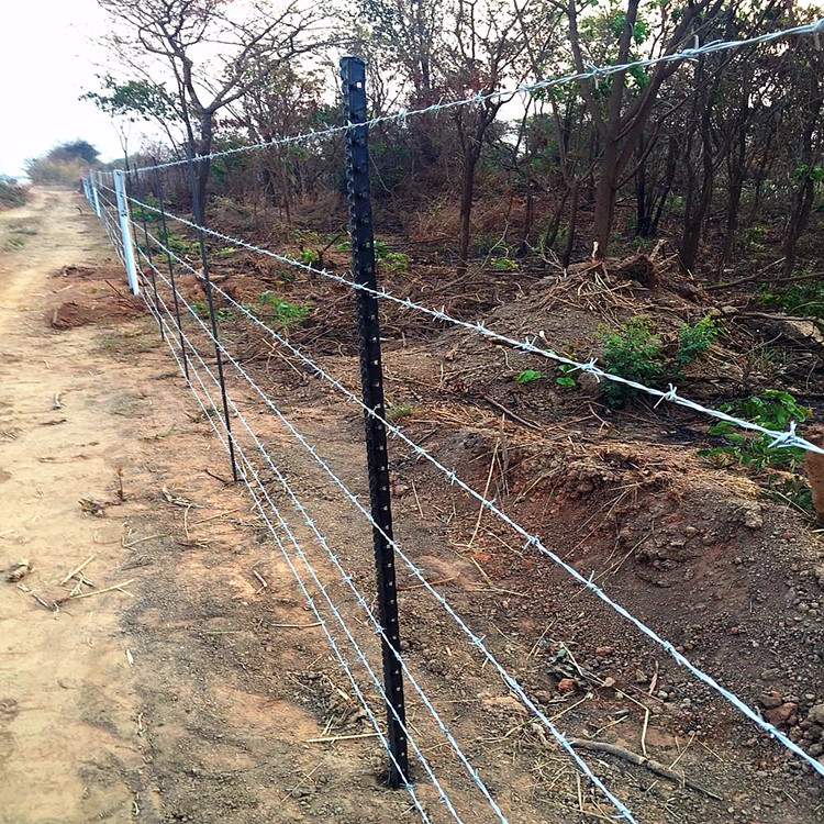 Steel Fence Posts Lowes Lowes Trellis Panel Lowes Garden