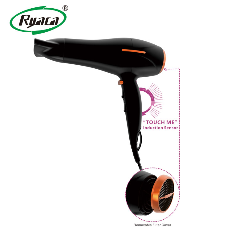 Hot Selling Salon Professional DC Motor with Concentrator/Diffuser/Ionic and Induction Function Professional blow Hair dryer