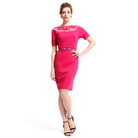 Wholesale Ladies 2015 New Style Offices Business Bodycon Wear to work women career dresses