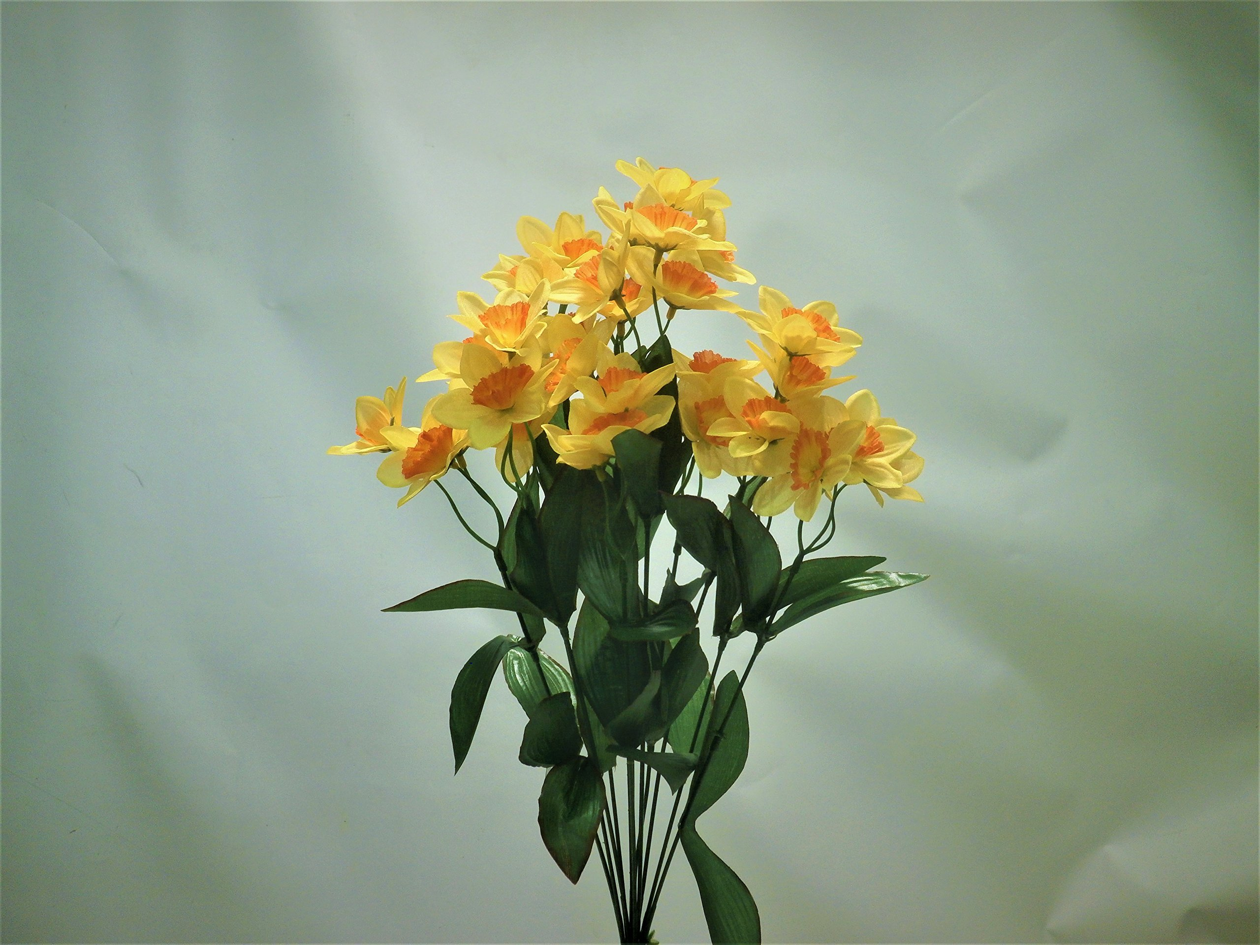 Cheap Bush Yellow Flowers Find Bush Yellow Flowers Deals On Line At