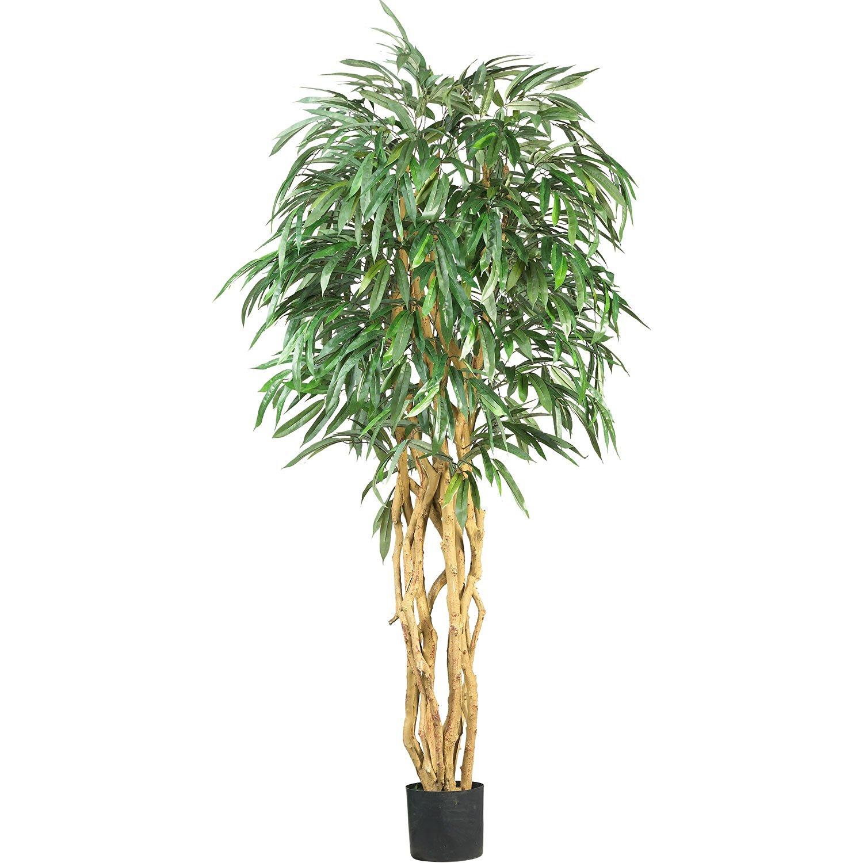 Real Looking 6' Weeping Ficus Silk Tree Green Colors - Silk Tree