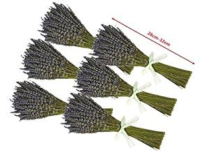 XWXS 6 Bunches French Dried Lavender Flowers Bunch, Fragrant long 28cm-32cm (0.1kg)