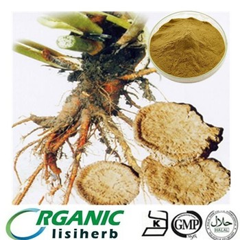 Chinese Traditional Herbs Rheum Officinale Extract / Rhubarb Extract  Chrysophanol For Antiviral - Buy Rhubarb Extract,Rheum Officinale