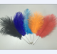 novelty hot sale ostrich feather quill pen with metal body feather quill pen for promotion gifts CH-6838