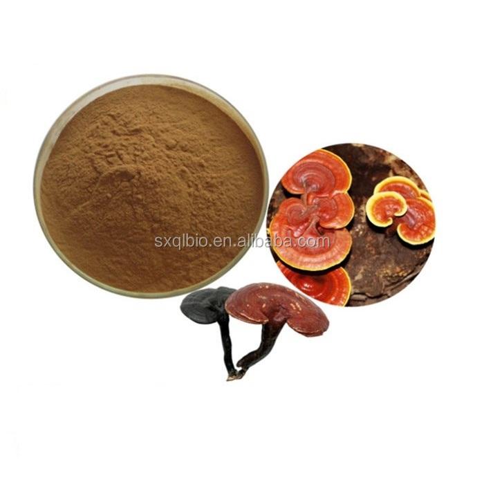 100% Pure natural Reishi Mushroom Ganoderma Lucidum Extract