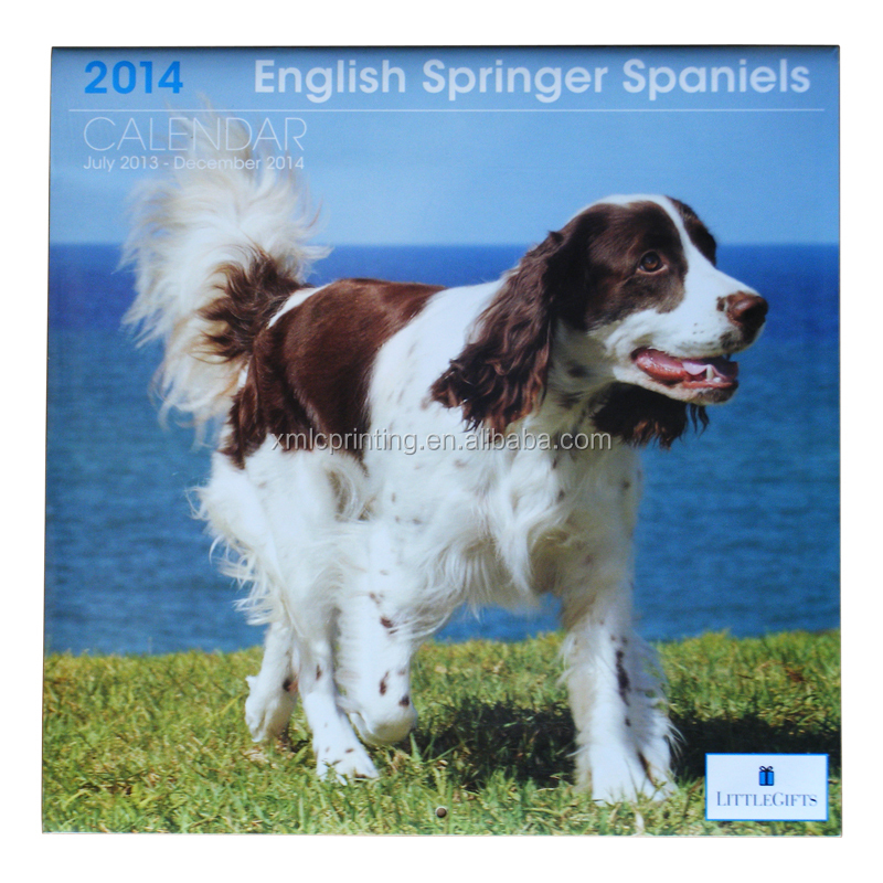 English Springer Spaniels Printed Square Saddle Stitching Binding / Stapled Paper Wall Calendar