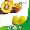 Yellow flesh Kiwi;100% Pure natural Kiwi
