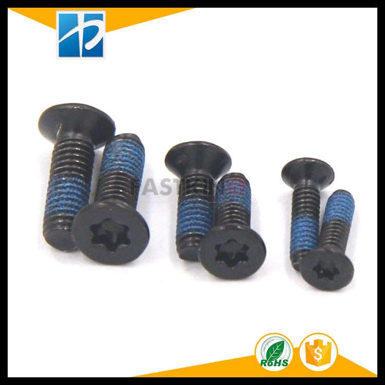 304 stainless steel GB2673 electrophoresis black flat head torx plum groove plating blue nylon patch rubber screw