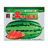 Touchhealthy supply Stock quality chinese vegetable seed/water melon seeds THS380 WITH 80gram seeds/Bag