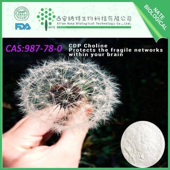 Factory bulk supply 99% min purity CDP-choline CAS:987-78-0 Nootropic Powder