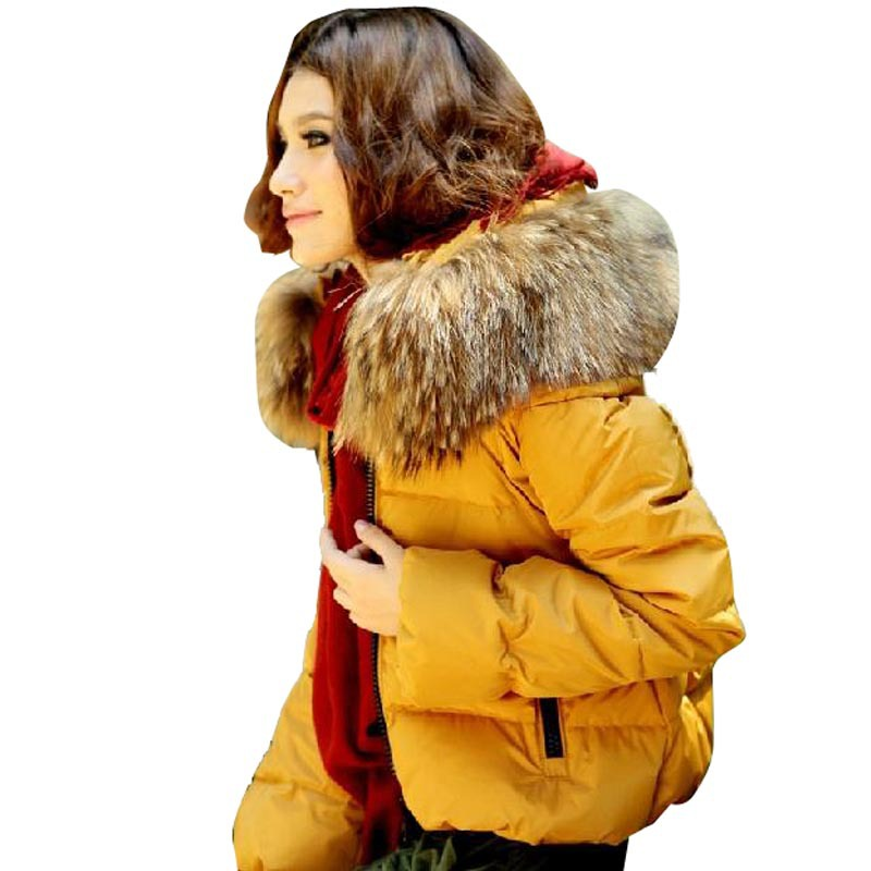 Women's Winter Jacket 2015 Fashion Slim Thick Warm Parka Women Fur Collar Short Jackets for Female Manteau Femme Woman Clothing