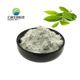 Organic Green Tea Extract l Theanine Pure Bulk Pure l-Theanine Powder