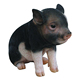 Custom wholesale Hot Selling life size black pig baby sculpture Garden Gnome decoration