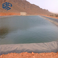 Cheap Price HDPE Fish Pond Liner Dam Liner in Kenya
